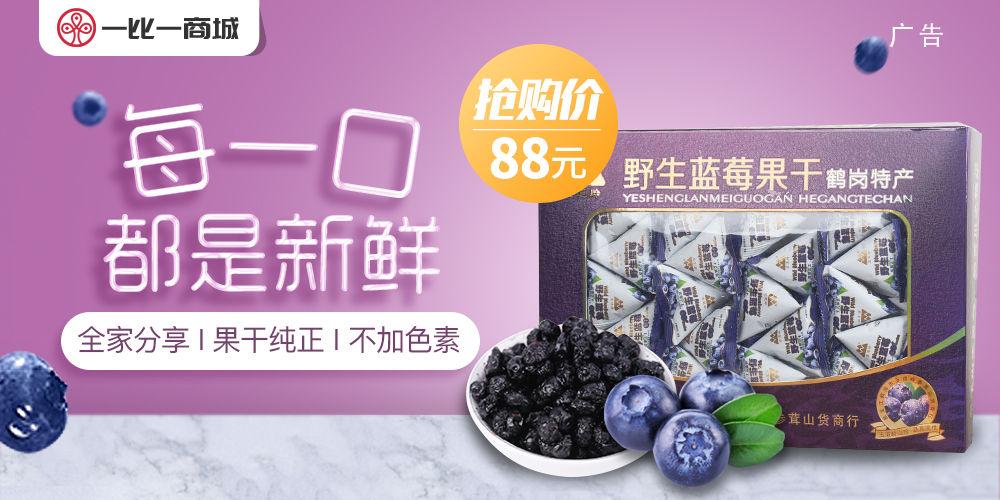 风味野生蓝莓 抢购价