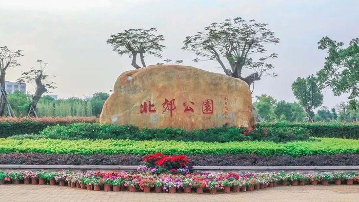 """时花已""""上线""""!汕头中心城区广场公园""""梳妆打扮""""迎春节"""